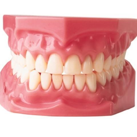 1,3 miljoen Nederlanders bezochten tandprotheticus