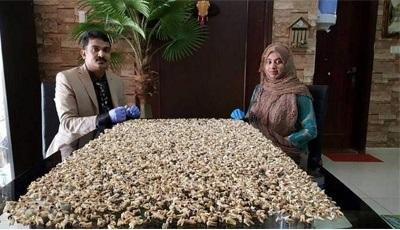 Indiase tandarts verzamelt getrokken tanden