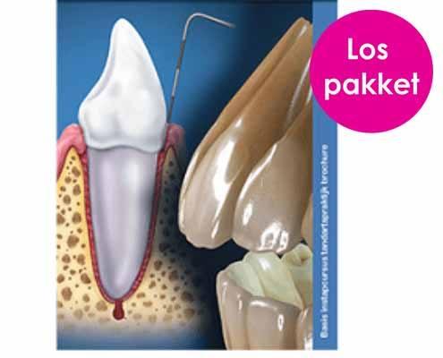Los pakket: Basis start tandartspraktijk voor medewerkers in de mondzorg
