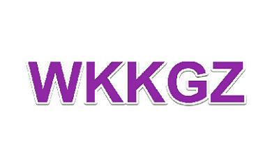 De Wkkgz en de nieuwe WTZa: meer dan alleen klachtenafhandeling