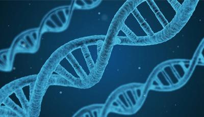 Parodontale aandoeningen en coronaire hartziekten hebben zelfde genetische basis