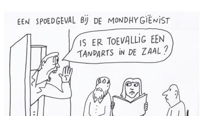 ANT vraagt met cartoon aandacht Tweede Kamerleden voor tandartsentekort