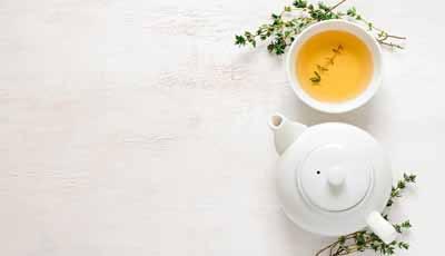 Bijeenkomst Journal Club team Mondzorgkunde HU: Is er evidence voor het gebruik van groene thee binnen de mondzorg?