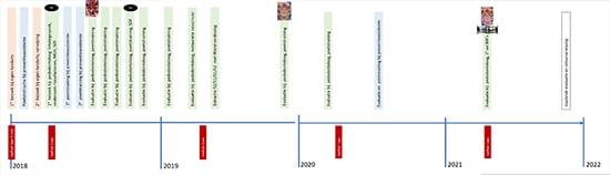 tijdlijn-verslag-Lina-Jasulaityle-550